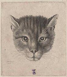 521px-Tzar Alekey cat