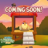 Chicken Coop coming soon