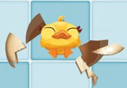 Chicken egg 2-stage during craking
