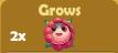 Grows 2x