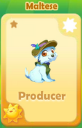 Producer Maltese