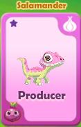 Producer Salamander