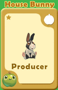 Producer House Bunny A