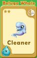 Cleaner Beluga Whale A