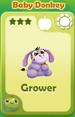 Grower Baby Donkey