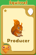 Producer Squirrel A