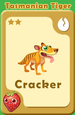 Cracker Tasmanian Tiger A