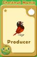 Producer Chestnut Munia A