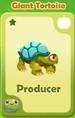 Producer Giant Tortoise