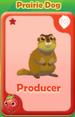 Producer Prairie Dog
