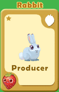 Producer Rabbit A