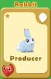 Producer Rabbit A