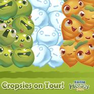 Cropsies on Tour Ireland
