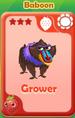 Grower Baboon