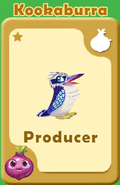 Producer Kookaburra A