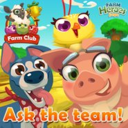 FC Ask the team!