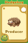 Producer Hedgehog A
