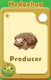 Producer Hedgehog A