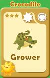 Grower Crocodile A