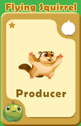 Producer Flying Squirrel A