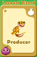 Producer Leopard Lizard A