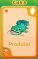 Producer Catfish