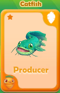Producer Catfish