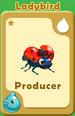 Producer Ladybird A