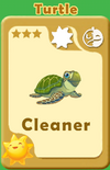Cleaner Turtle A
