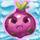 Onion grumpy on snow