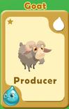 Producer Goat A