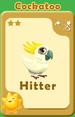 Hitter Cockatoo A