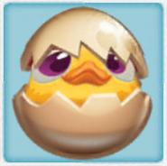 Chicken egg 2-stage (2)