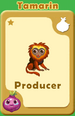 Producer Tamarin A