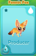 Producer Fennec Fox