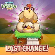 Chicken Coop last change