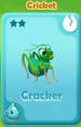 Cracker Cricket
