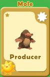 Producer Mole A