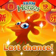 Chicken Coop 2017 Last Chance