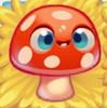Mushroom on hay