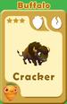 Cracker Buffalo A