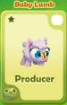 Producer Baby Lamb