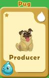 Producer Pug A