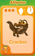Cracker Alligator