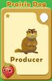 Producer Prairie Dog A
