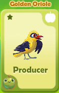Producer Golden Oriole