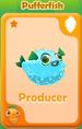Producer Pufferfish