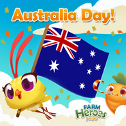 Events Australia Day