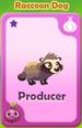 Producer Raccoon Dog