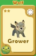Grower Wolf A